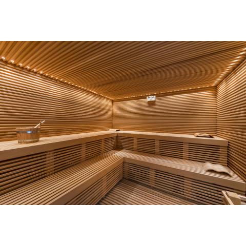 Sauna Elite con parete in sale, cm 261x398x237h